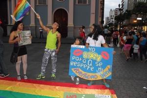 Beso Publico contra el rechazo a la Homofobia y Transfobia el dia 17 de mayo del 2014, evento realizado por Silueta X (54)