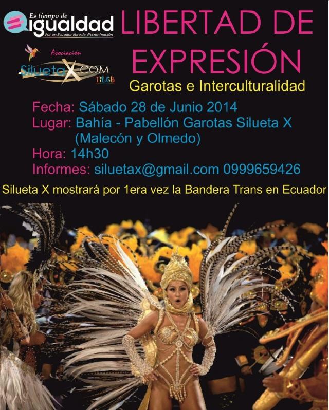 libertad-de-expresic3b3n-silueta-x-en-orgullo-glbti-2014