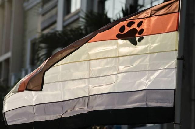 Orgullo LGBT Gay Ecuador Guayaquil 2015 - Asociación Silueta X (146)