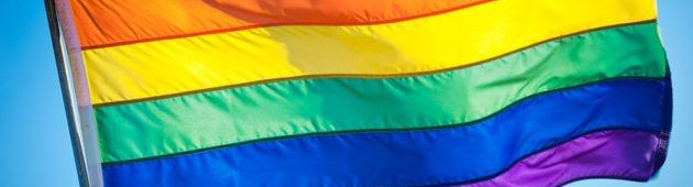 COLECTIVO LGBTI PREOCUPADO POR ELIMINACIÓN DEMINISTERIO